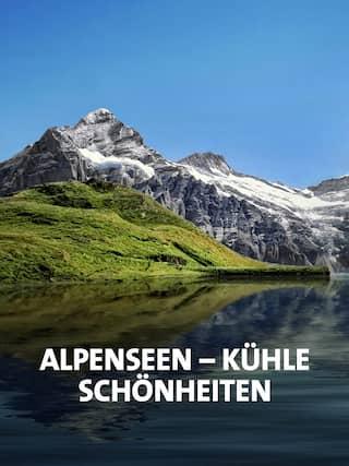 Blick über den Bachalpsee in den schweizer Alpen