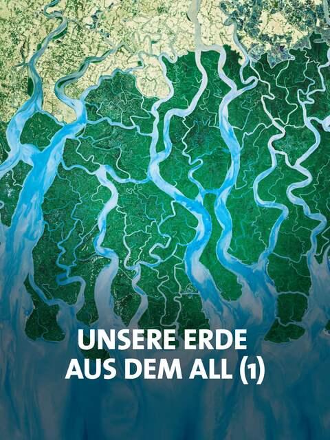 Flussdelta in einer Satellitenaufnahme