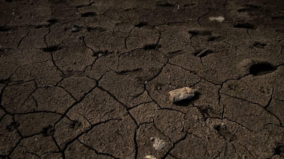 Jeder Tropfen zählt - Lernen von der Dürre