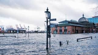 Hafen Hamburg w wie wissen