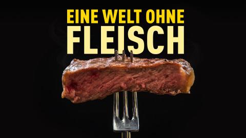 Ohne Fleisch