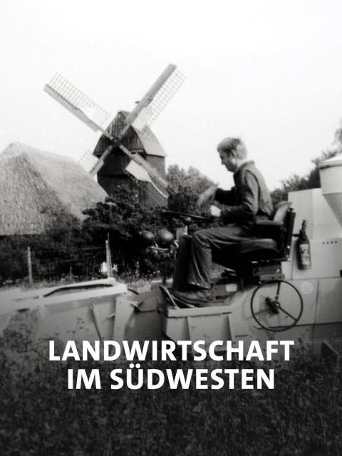 """Ein undatierte Schwarz-Weiß-Foto aus den 60er Jahren zeigt die Ausbildung an der """"Deutschen Lehranstalt für Agrartechnik""""."""