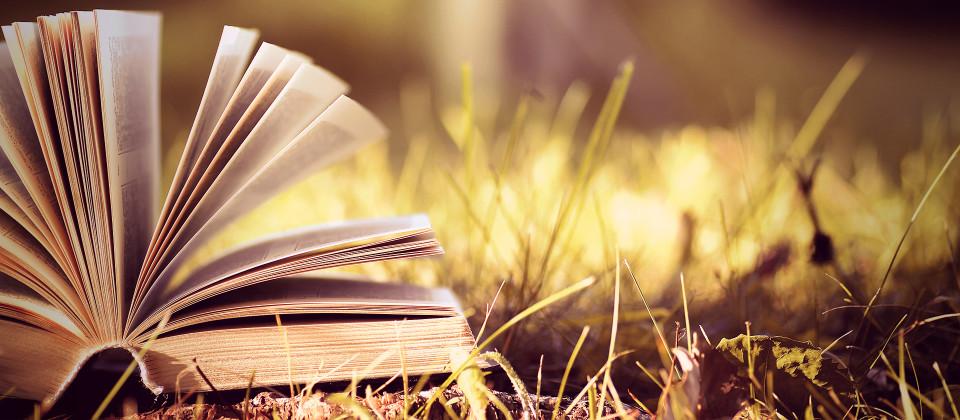 Buch im Blätterberg