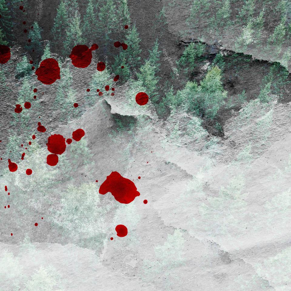 Ein Bild von einem Wald mit Blutflecken.
