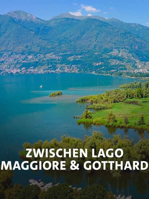 Naturschutzgebiet Bolle di Magadino.