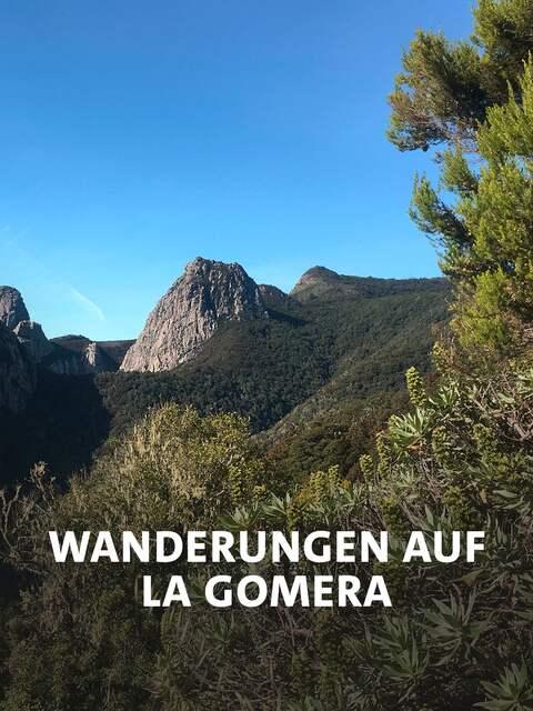 Landschaft im Nationalpark Garajonay auf der Kanareninsel La Gomera.