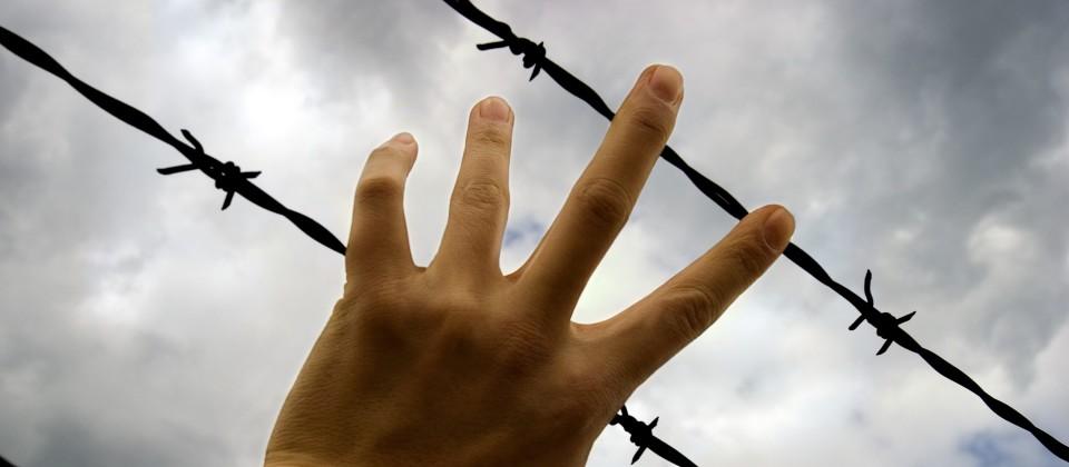 alpha-demokratie weltweit: Macht durch Angst