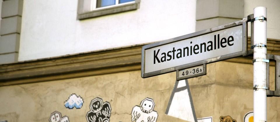 Straßenschild in der Berliner Kastanienallee (Quelle: imago images / Jürgen Hanel)