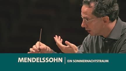 Dirigent Fabio Luisi