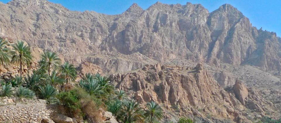 Ein kleiner Gumpen im Felsengebirge - gut 3.500 Meter hoch – sichert vielen Arten das Überleben. © NDR/BBC/Chadden Hunter 2013