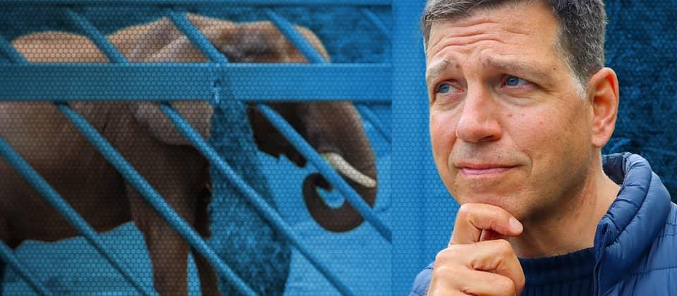 Moderator Philipp Engel macht sich selbst ein Bild vom modernen Tierpark – im hessischen Opel-Zoo bei Kronberg im Taunus.