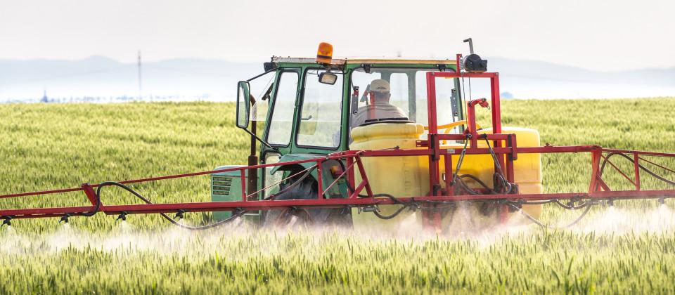 Bauer sitzt auf einem Traktor und düngt ein Getreidefeld