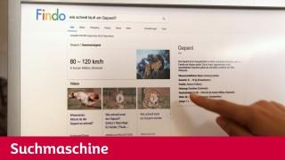 Maus - Suchmaschine