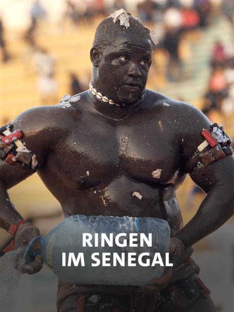 Ringen, Senegal, Hexerei, Ausweg, Spektakel