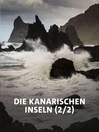 Die Küste im Nordosten Teneriffas am Fuße des Anaga-Gebirges ist rau und zerklüftet (Bild: rbb/NDR/NDR Naturfilm/doclights/Science Vision/Michael Schlamberger)