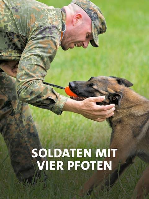Hundesoldaten