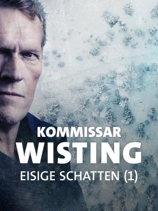Kommissar William Wisting (Sven Nordin).