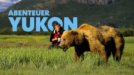 Abenteurer Andreas Kieling fotografiert einen Bären