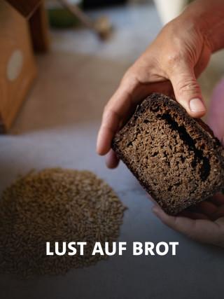 Dunkles Brot umfasst von zwei Händen