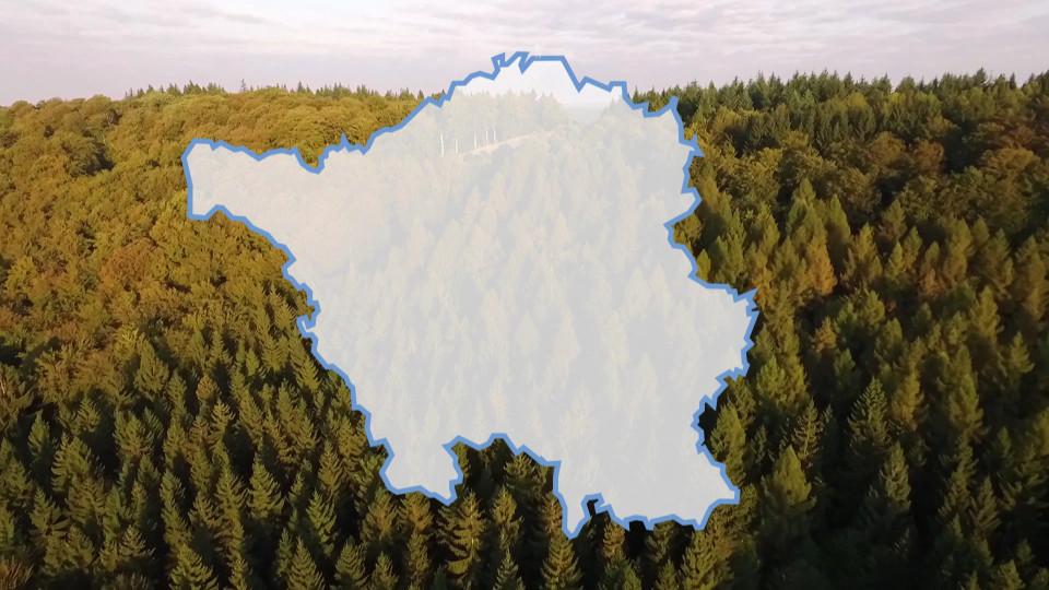 Das Bundesland Saarland