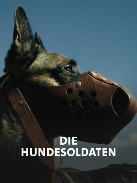 Die Hundesoldaten