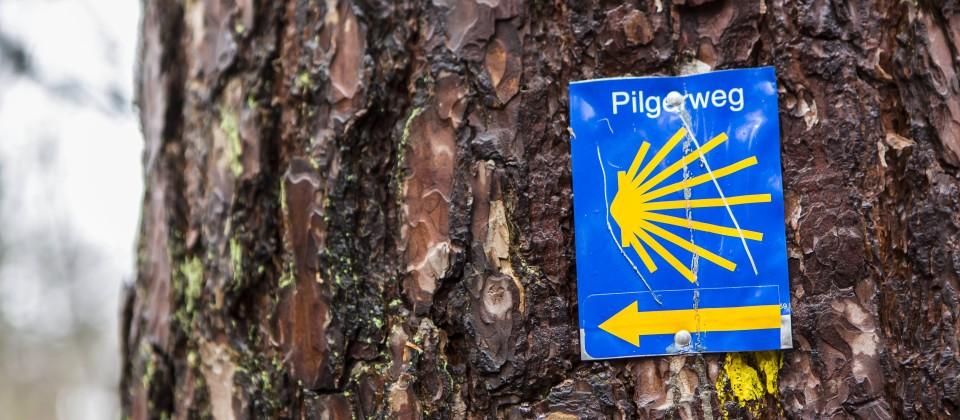 Ein Zeichen an einem Baum weist auf den Jakobsweg hin. Quelle: imago/Manngold