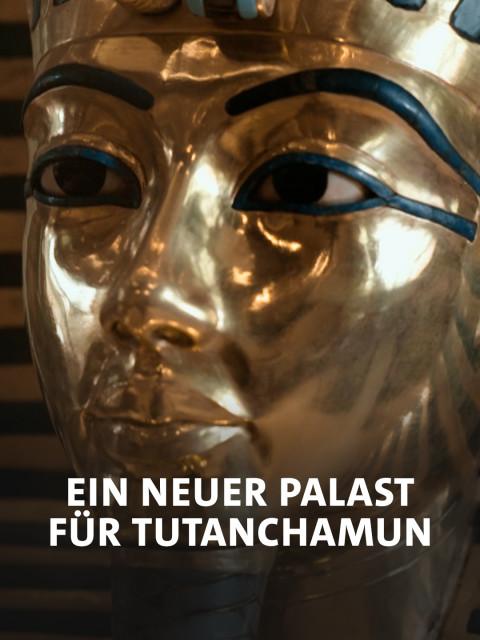 Kopf des Tutanchamun im Grand Egyptian Museum.